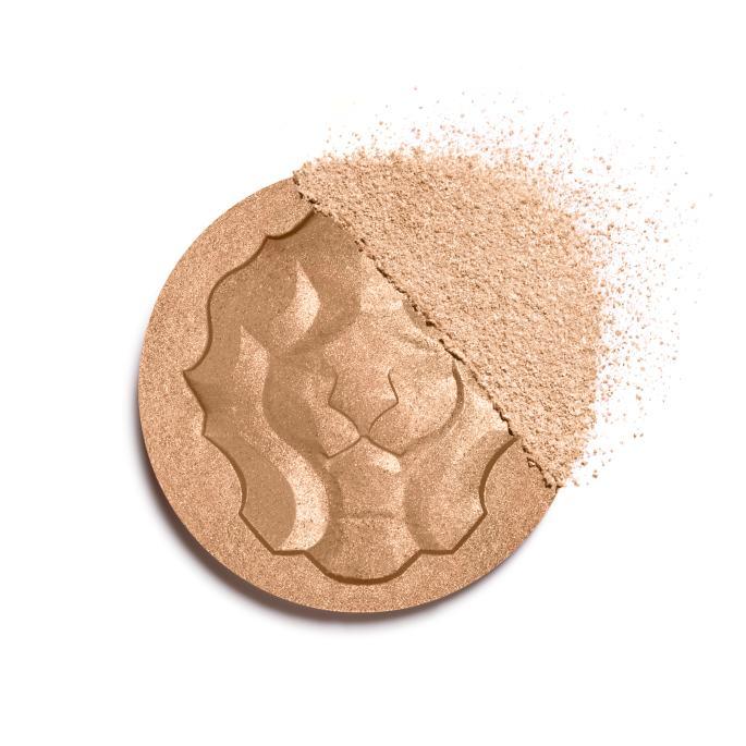 le-lion-de-chanel-basic-texture-151680-8807428980766